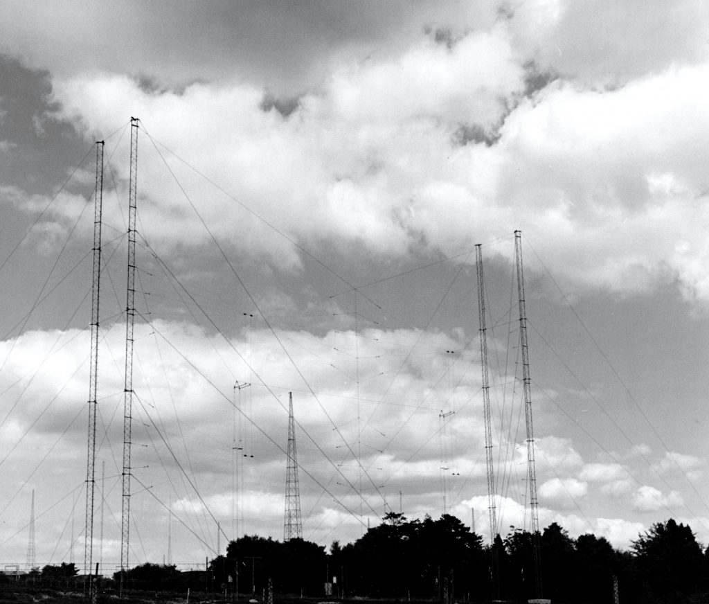 Black and white picture of aerials above trees